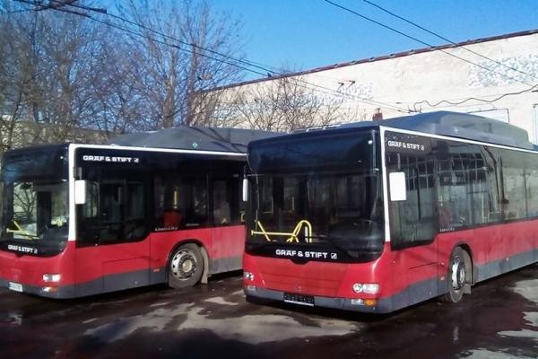 З Аляски на Дружбу тернополяни їздитимуть новими автобусами (Відео)
