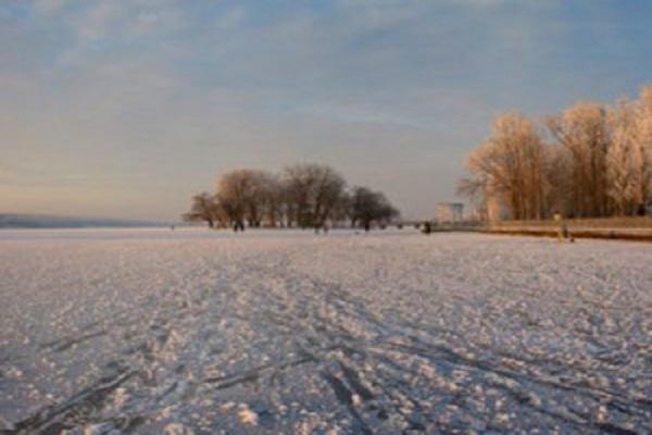 Екологи попереджають, що Тернопільському ставу загрожує небезпека