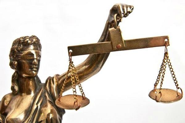 Лицем в багно: як тернопільські судді провалили екзамен на фаховість