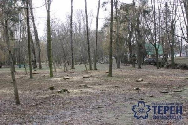 В парку вирубали 30 дерев, і ніхто нічого не знає? (фото, відео)