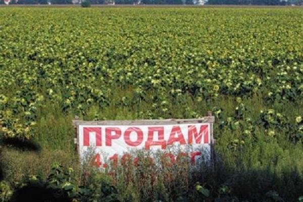 В області з-під молотка пустили 55 гектарів землі