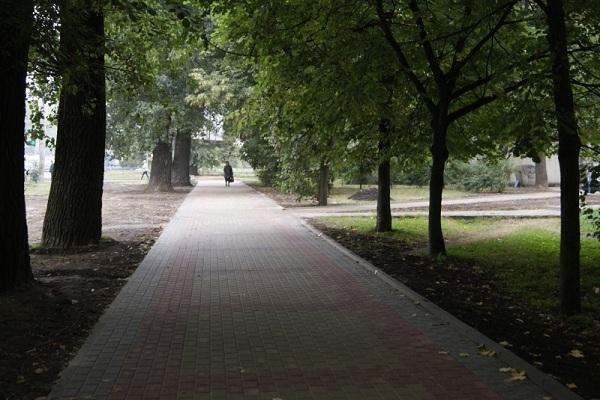 Тернопіль витратить 6 мільйонів на 17 тротуарів