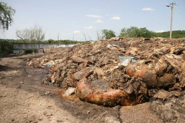 Тернопільщина просить в Кабміну гроші, щоб упередити екологічну катастрофу