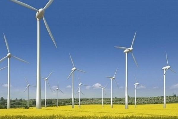 Як на Тернопільщині використовують енергію вітру (Відео)