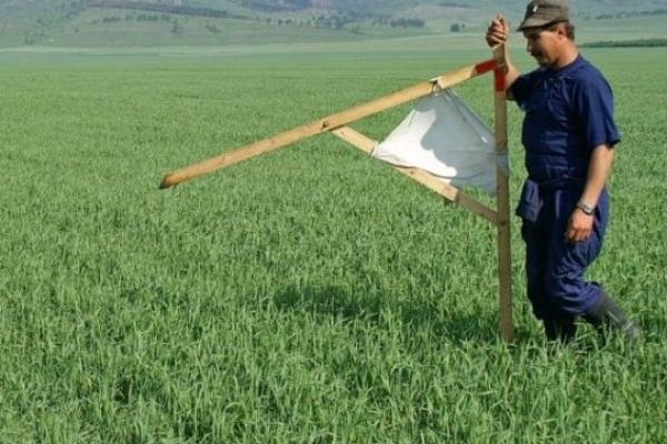 Земельні торги на Тернопільщині: інвестори сплачуватимуть до місцевих бюджетів майже вісім мільйонів гривень щорічно