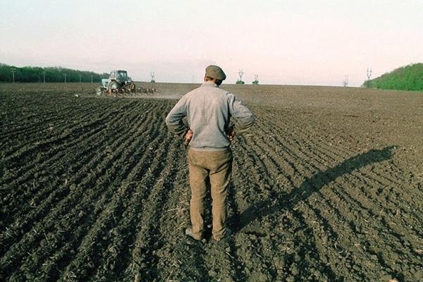 «Інакше ми не виживемо»: українські фермери поставили ультиматум владі
