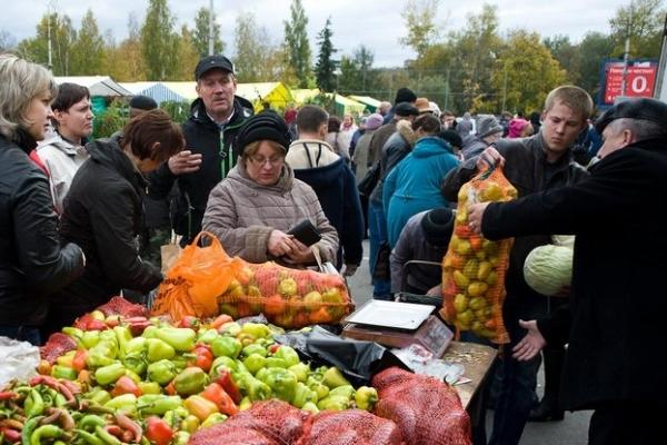 Цієї суботи у Тернополі – сільськогосподарський ярмарок (перелік локацій)