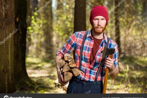 На Тернопільщині найбільше заробляють лісники