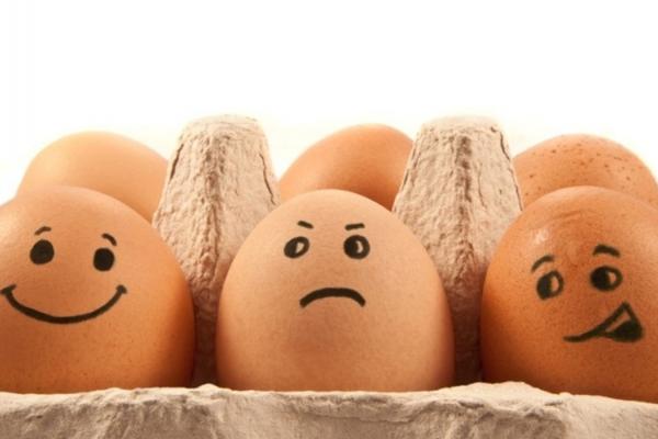 Як НАБУ спровокувало подорожчання яєць в Україні