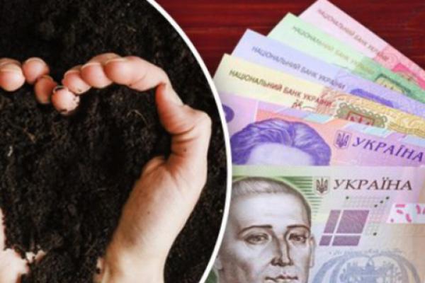 За скільки можна продати свої 2 га землі: названо ціни в різних регіонах України
