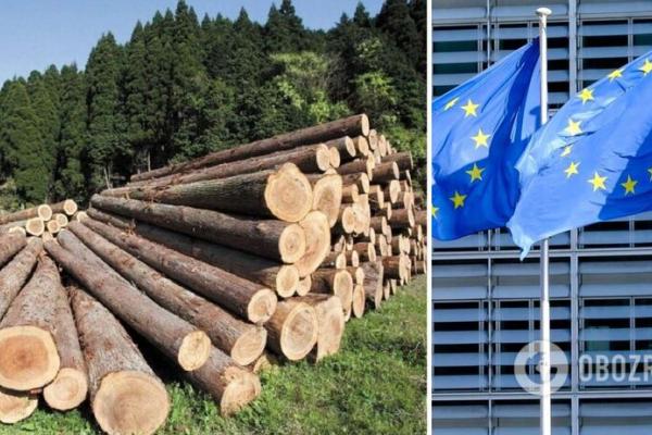 Україна скасує мораторій на експорт лісу-кругляку в обмін на 600 мільйонів євро від Євросоюзу